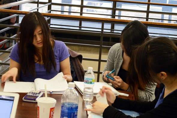 Students study at the Daley Library