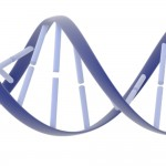 illustration of a DNA double helix