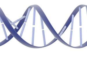 Biochemists discover cause of genome editing failures with hyped CRISPR system