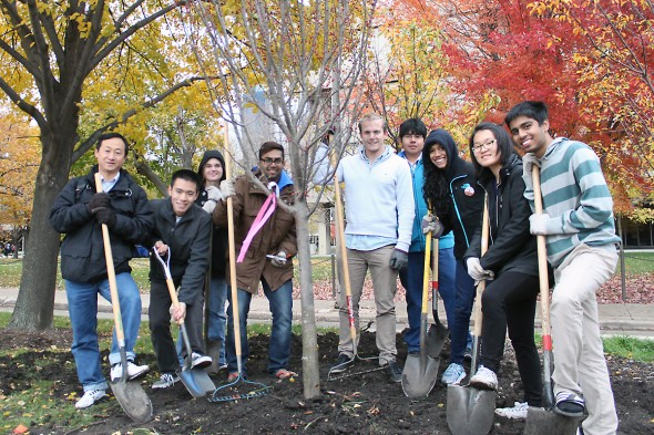 Tree Campus group