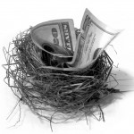 money folded up and placed in a nest