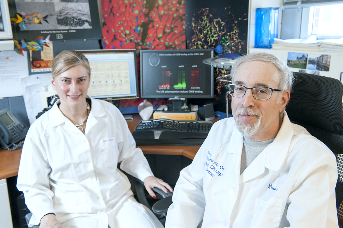 anne boullerne research assistant professor of anesthesiology and doug feinstein professor of anesthesiology at uic and research biologist at the jesse