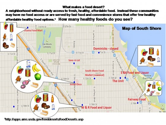 Map of food stores in the South Shore neighborhood