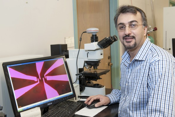Amin Salehi-Khojin, asst professor of mechanical engineering. Photo: Roberta Dupuis-Devlin/UIC Photo Services
