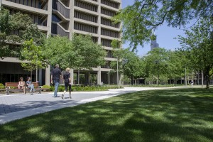 STEM education at UIC garners $2.9M National Science Foundation grant
