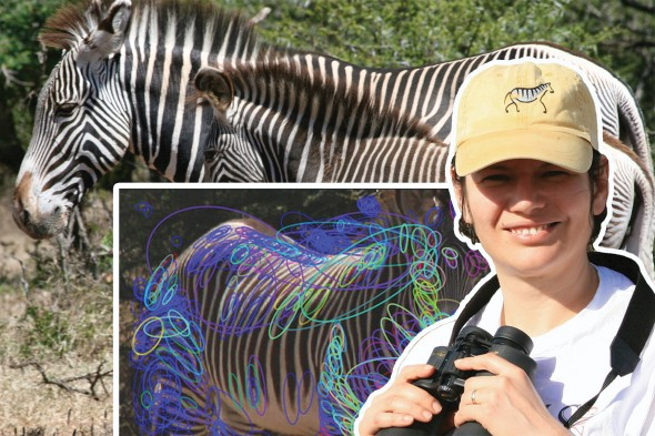 Tanya Berger-Wolf and zebra research