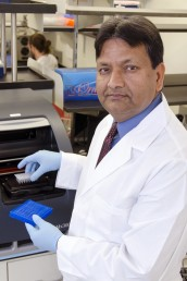 Subhash Pandey, director of UIC Center for Research in Alcohol Epigenetics. Photo: Joshua Clark. Click on image to download.