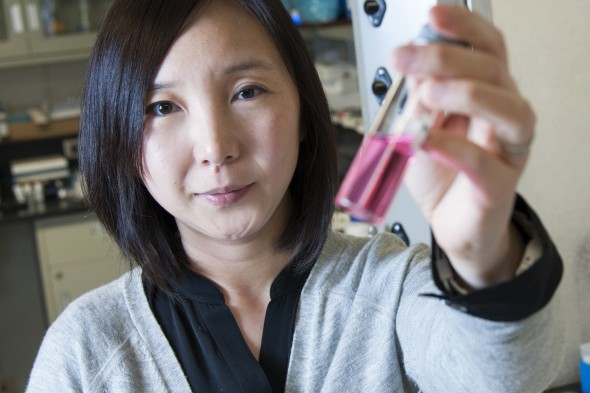 Ying Liu, associate professor of chemical engineering, Natural Sciences and Engineering Rising Star, Researcher of the Year Award