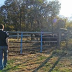 Alex Ourth outside a pasture