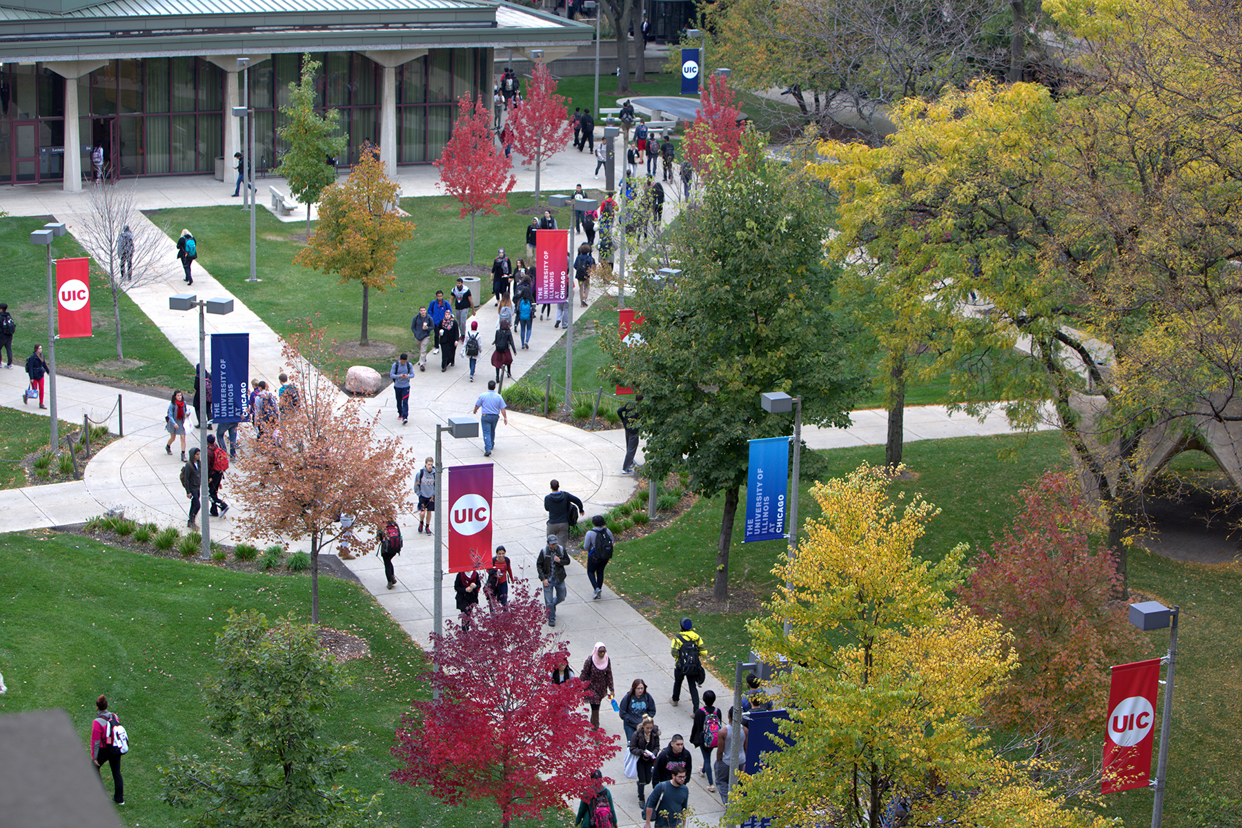 UIC graduate programs remain strong in US News rankings