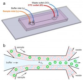 Cancer cell separation device
