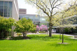 UIC campus - green buildings