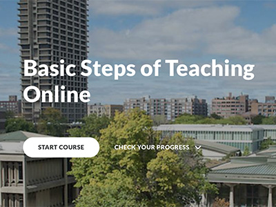 Faculty resource: 'Basic Steps of Teaching Online'