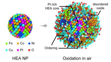 Illustration of the movement of different molecules during the oxidation of high-entropy alloy nanoparticles.