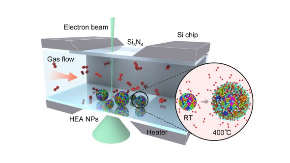 Schematic of the setup used to study the oxidation of high-entropy alloy nanoparticles (HEA NP). Inset shows HEA NP structure at room temperature (RT) and during the high-temperature oxidation. (Image by University of Illinois Chicago.)