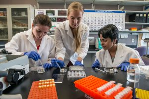 UIC reports record $410 million in annual sponsored research awards
