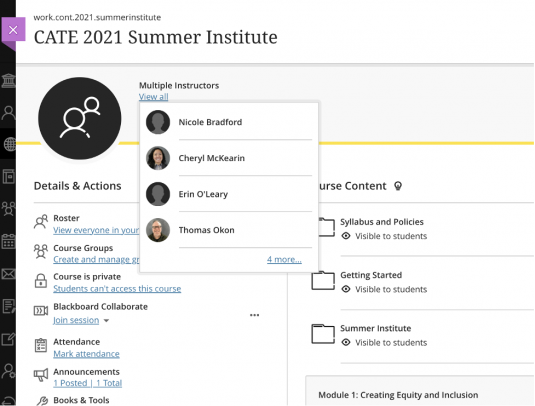 Screenshot of a computer screen for the CATE 2021 Summer Institute. It lists the course roster, course groups and links for attendance, announcements or Blackboard