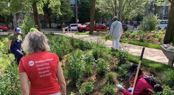 Participants learned about native garden maintenance during an event at the Arthington Mall rain gardens.