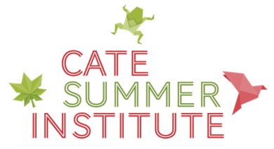 """Text says """"CATE Summer Institute"""""""