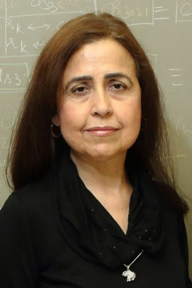 Isabel Cruz, Natural Sciences and Engineering / Distinguished Researcher